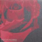 Eco Rose 2770
