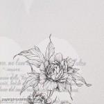 Eco Rose 2790