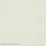 Papel Pintado Coconet 566-2