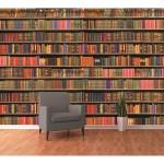 Fotomural w4p bookshelf 002