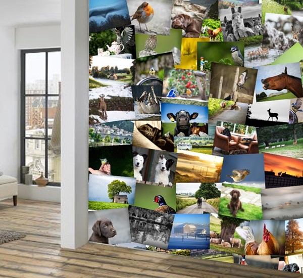 Collage decorativo de animales