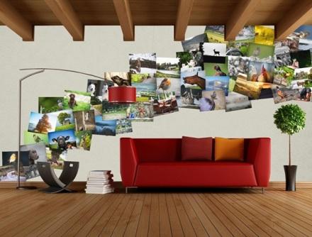 Fotomurales en collage para una clinica veterinaria