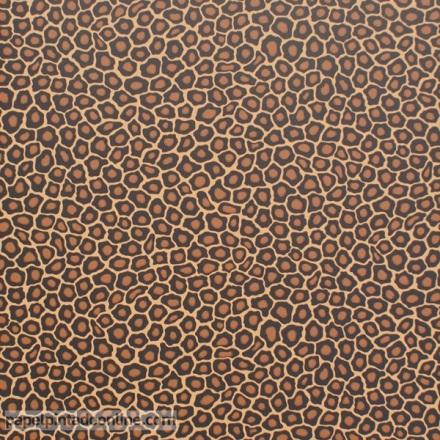 Papel pintado The Ardmore collection Senzo Spot 109-6028