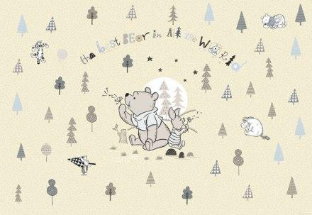 Fotomural Winnie The Pooh 8-4024