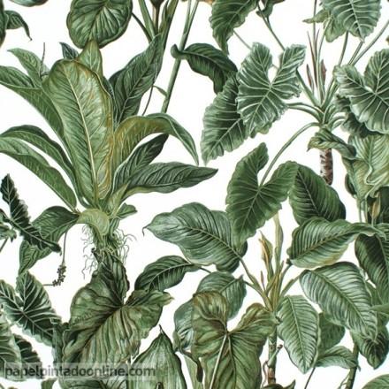 Papel pintado hojas verdes fondo blanco 6303-07