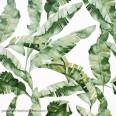 Papel pintado hojas verdes